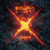 ||> TerrariuM || HEAVY_METAL_BAND